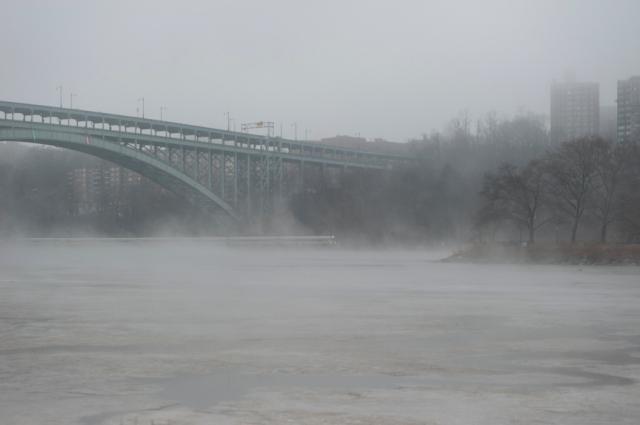 Park Fog-6